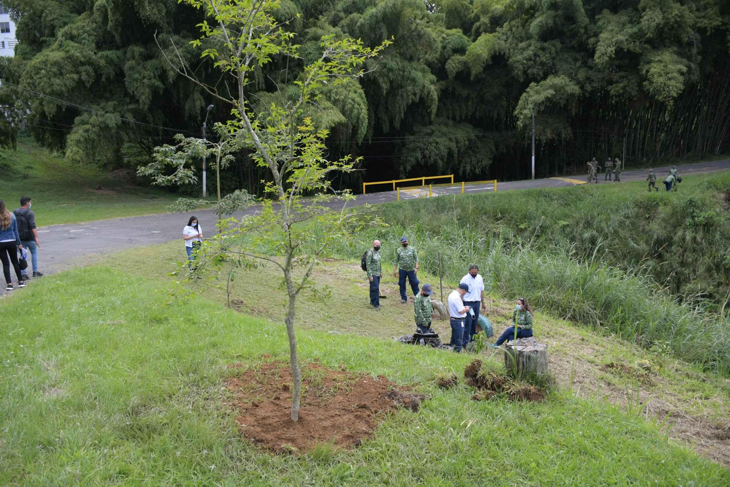 Día de proteger y conservar los ecosistemas urbanos de la región